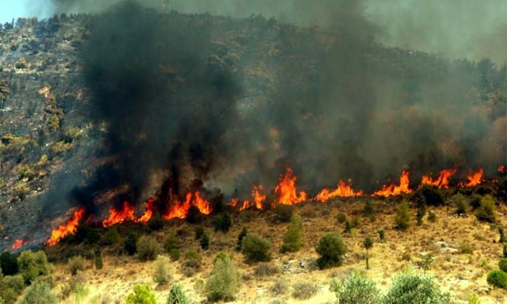 Υπό έλεγχο η επικίνδυνη η φωτιά στο Πήδημα της Καλαμάτας
