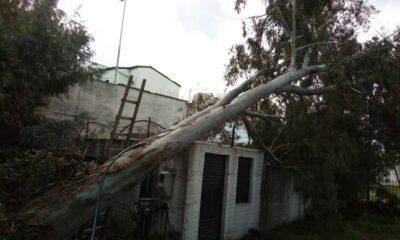 Προβλήματα στο γήπεδο του Μεσσηνιακού από την κακοκαιρία... (photos) 13