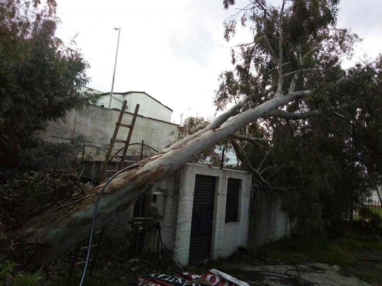 Προβλήματα στο γήπεδο του Μεσσηνιακού από την κακοκαιρία… (photos)