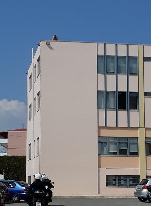 Γυναίκα απείλησε να πέσει από την ταράτσα του Δημαρχείου Καλαμάτας