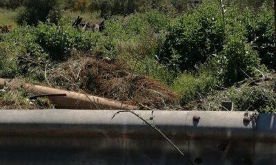 ΣΟΚ σε Βαλύρα Μεσσηνίας: Ο πρόεδρος της Κοινότητας πέταγε μπάζα νεκροταφείου δίπλα στο ποτάμι! 6