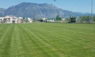"""""""Χαλί"""" το γήπεδο στα Παλιάμπελα! (pics) 7"""