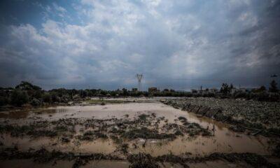 Το ΣΟΚ συνεχίζεται: Επτά οι νεκροί και ένας αγνοούμενος στην Εύβοια…