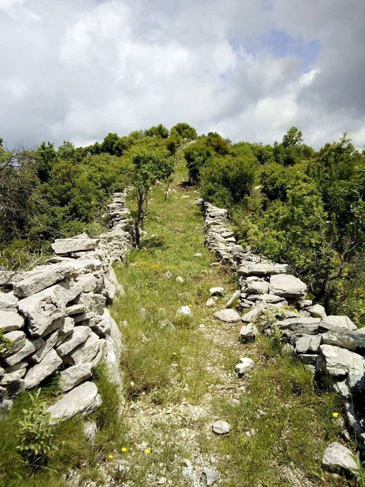"""Ευκλης Καλαμάτας: Περπατούν στο """"Μονοπάτι του Φωτός"""", το μονοπάτι του Παυσανία"""
