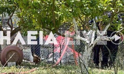 Ηλεία: Δύο νεκροί μετά από πτώση ιδιωτικού αεροσκάφους (videos) 132