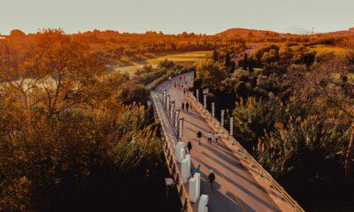 Navarino Challenge 2021: Ανακάλυψε το άθλημα σου 8