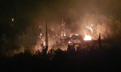 Μεγάλη φωτιά και στην Άνθεια Μεσσηνίας, λίγο έξω από την Καλαμάτα... (pics-video) 12