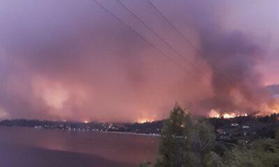 Φωτιά στην Εύβοια – Πληροφορίες για αποκλεισμένους – «Βοηθήστε μας, θα θρηνήσουμε ανθρώπινες ζωές» (+vids) 104