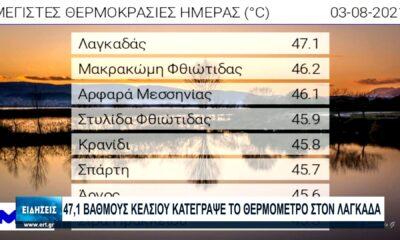 Συνεχίζεται ο καύσωνας σε όλη τη χώρα - 46,1 C (!) στο Αρφαρά... (video) 8