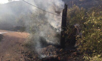 Σε εξέλιξη η φωτιά στο δάσος Μαγκλαβά – Σε ύφεση η φωτιά στα Λειβαδάκια