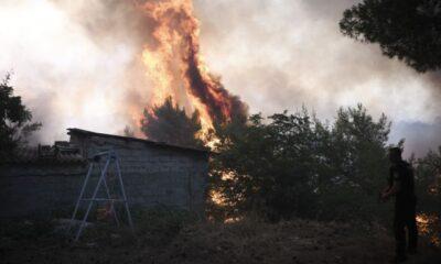 Φωτιές – Σε εξέλιξη τέσσερα μεγάλα πύρινα μέτωπα στη χώρα – Η ενημέρωση της Πυροσβεστικής (+videos) 6