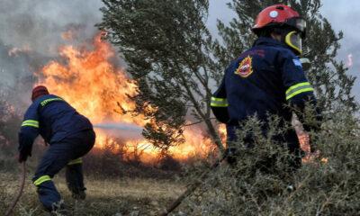 Συνεχίζεται η μάχη με τις φλόγες σε Γορτυνία, Αρχαία Ολυμπία και Ακροκόρινθο (+videos) 4