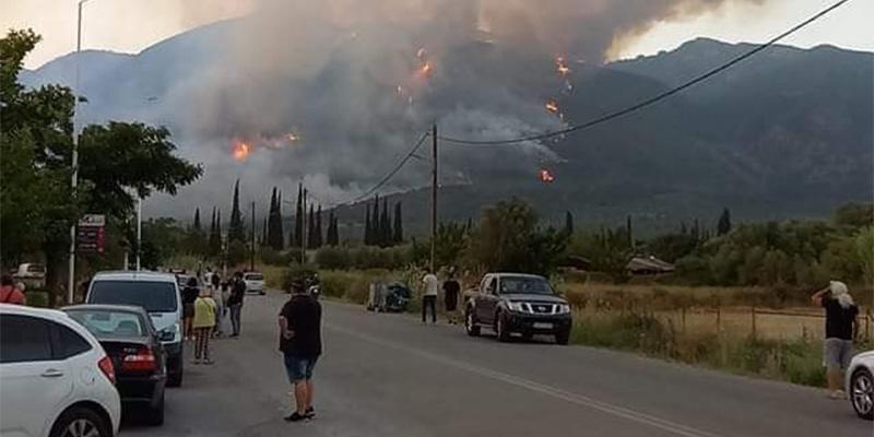 Μεσσηνία – Η φωτιά πλησιάζει προς το χωριό Καρνάσι – Δραματικές στιγμές