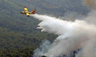 Συναγερμός στα Βίλια: Η φωτιά πλησιάζει - «Κοντά στα σπίτια η πυρκαγιά» (+videos) 6